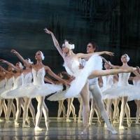 Балет «Лебедине озеро» - Львівський оперний театр