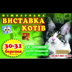 Міжнародна виставка котів (CFA Cat Show)