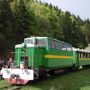 Екскурсія «Карпатський трамвай і скелі Довбуша»