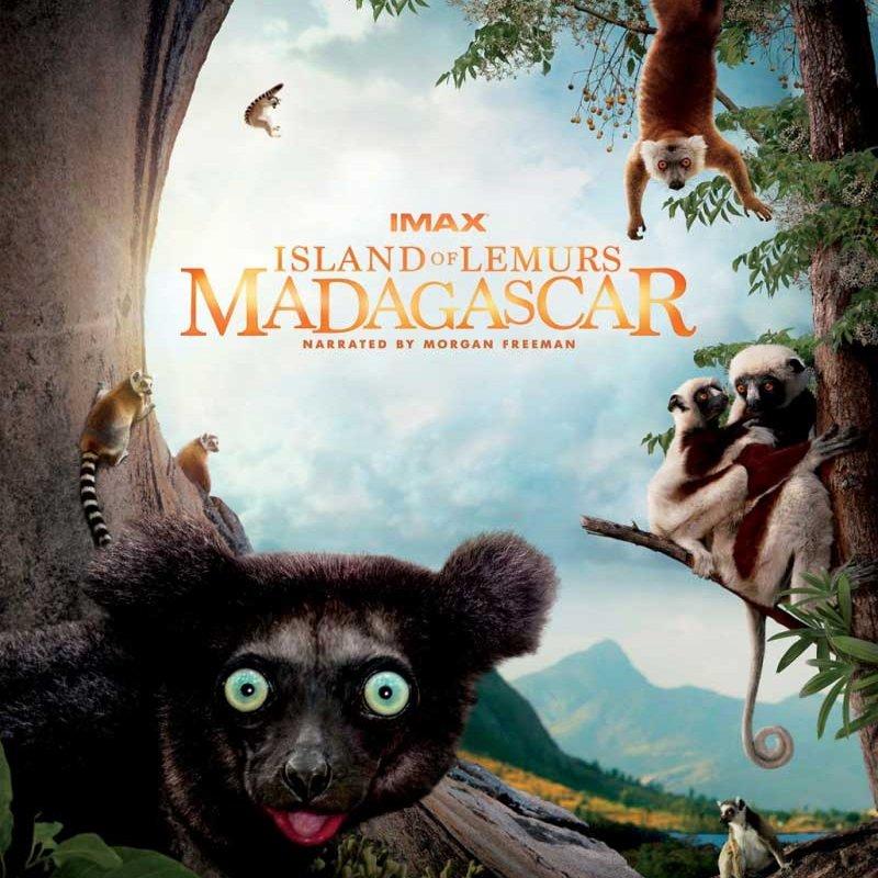 Фільм «Острів лемурів: Мадагаскар» (Island of Lemurs: Madagascar)