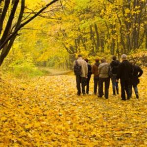 Екскурсія «Цісарський ліс (Kaiserwald)»