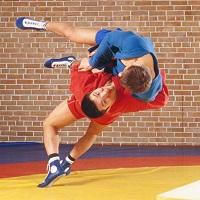 Чемпіонат України зі спортивного й бойового самбо