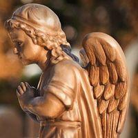 Благодійна екскурсія «Личаківський цвинтар»