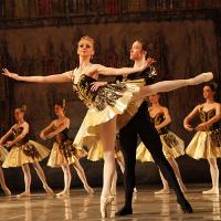 Вечір одноактних балетів «Шехеразада» та «Кармен-сюїта»