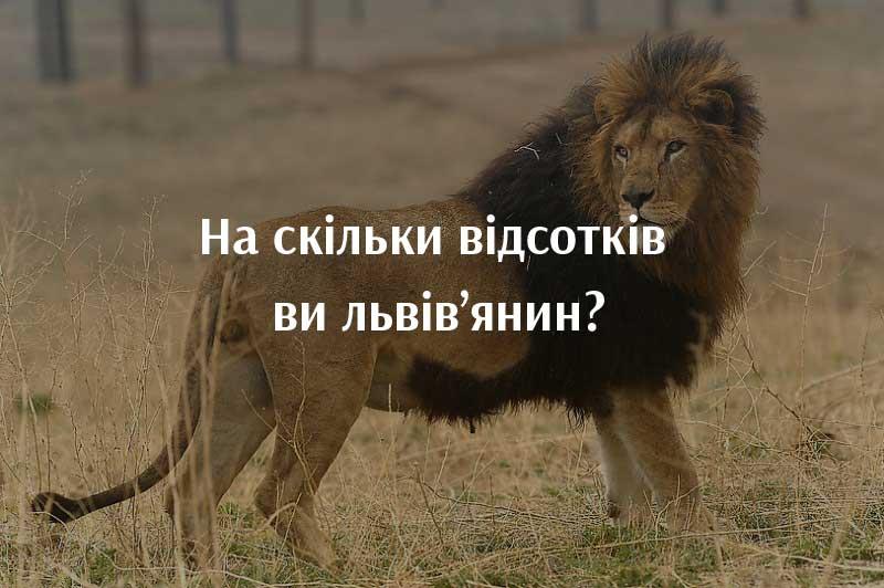 lviviv