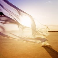 Концерт «Народжені вітром»