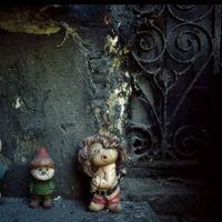 Виставка фотографій Іґора Малієвського