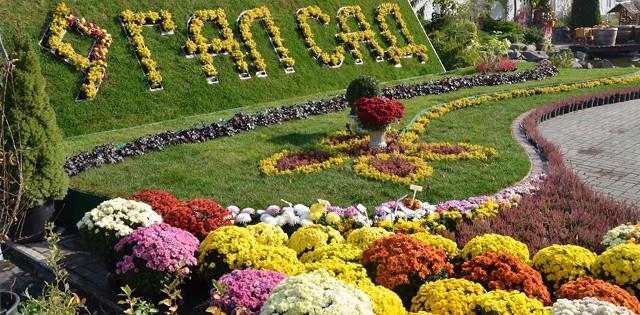 традиційний осінній ярмарок у садовому центрі «ГалСад»