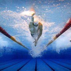 Чемпіонат Львівської області з плавання