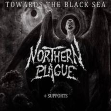 Концерт Towards the Black Sea - Northern Plague (PL) + Disarm
