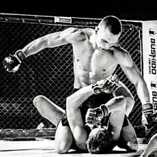 Міжнародний турнір з ММА –RFP / MMA Bushido - West Fight 25