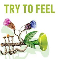 Laura & Kristina Marti feat. Hans Peter Salentin презентують альбом Try to Feel