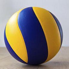 Міжнародний турнір «Відкритий Кубок Львова з волейболу»