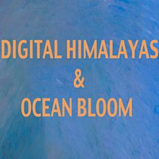 Концерт Digital Himalayas та Ocean Bloom