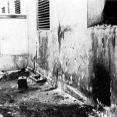 Лекція «Хто кого? Проблеми в розпізнаванні вбивць та жертв в Україні напередодні і під час Другої світової війни»