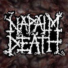 Концерт Napalm Death