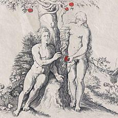 Виставка «Thesaurus Sacrarum Historiarum: Біблія в ілюстраціях фламандських майстрів XVI ст.»