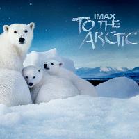 Фільм «Арктика» (To the Arctic)