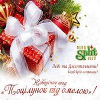 Новорічне шоу «Поцілунок під омелою»