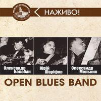 Концерт Open Blues Band
