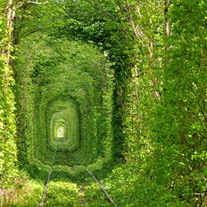 Екскурсія «Тунель кохання та форт війни»