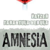 Вечірка Amnesia @ Атмосфера