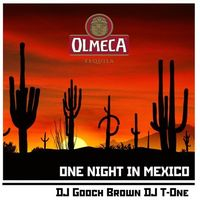 Вечірка One Night in Mexico