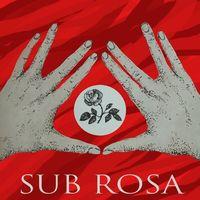 Концерт гурту Sub Rosa @ The Gas Station