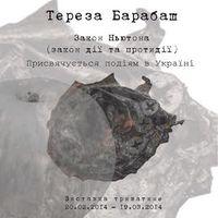Виставка Терези Барабаш «Закон Ньютона (закон дії та протидії)»