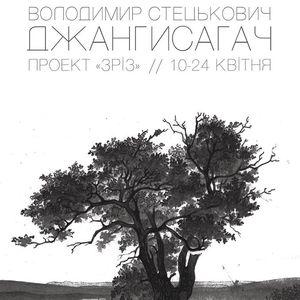 Проект «Зріз» Володимира Стецьковича з інсталяцією «Джангисагач»