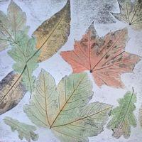 Цикл майстер-класів «Графічна осінь»
