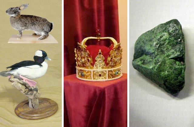 Який з цих експонатів представлений у львівських музеях?