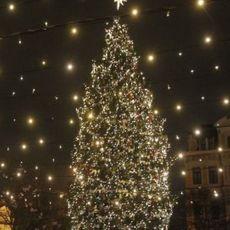 Концерт «Різдвяний фейєрверк»