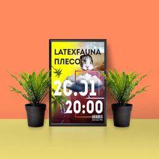 Концерт гуртів Latexfauna і Плесо