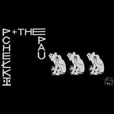 Концерт The Pau + Pchełki