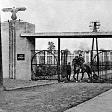 Лекція «Янівський табір у центрі Голокосту в Галичині»