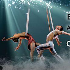 Акробатична шоу-вистава «Сон літньої ночі» у виконанні польського театру Ocelot