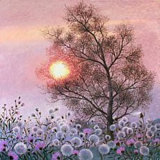 Виставка Ольги Кваші «Друзі мої, дерева»