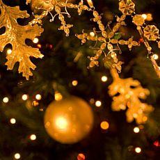 Концерт «Різдвяні мелодії на органі»