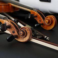 Концерт «Романтичне тріо»