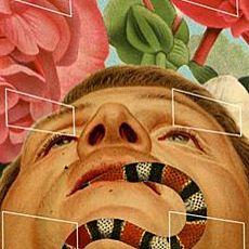 Виставка колажів Мачея Боґдановича «Сади насолод»